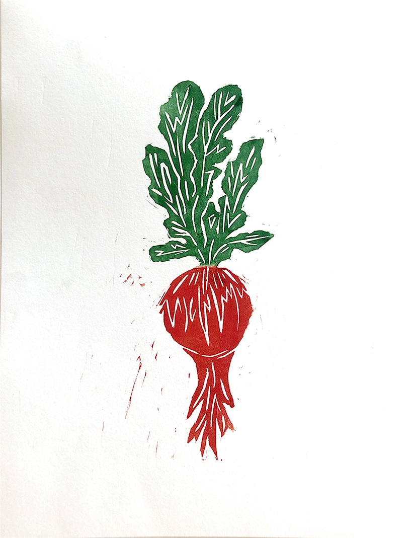 Bright red and green vegetable on a white background.