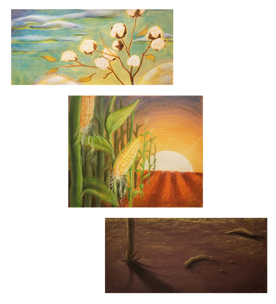 Three horizontal paintings. The top painting is a cotton plant in bloom. The middle painting is a corn field at sunset. The bottom painting is