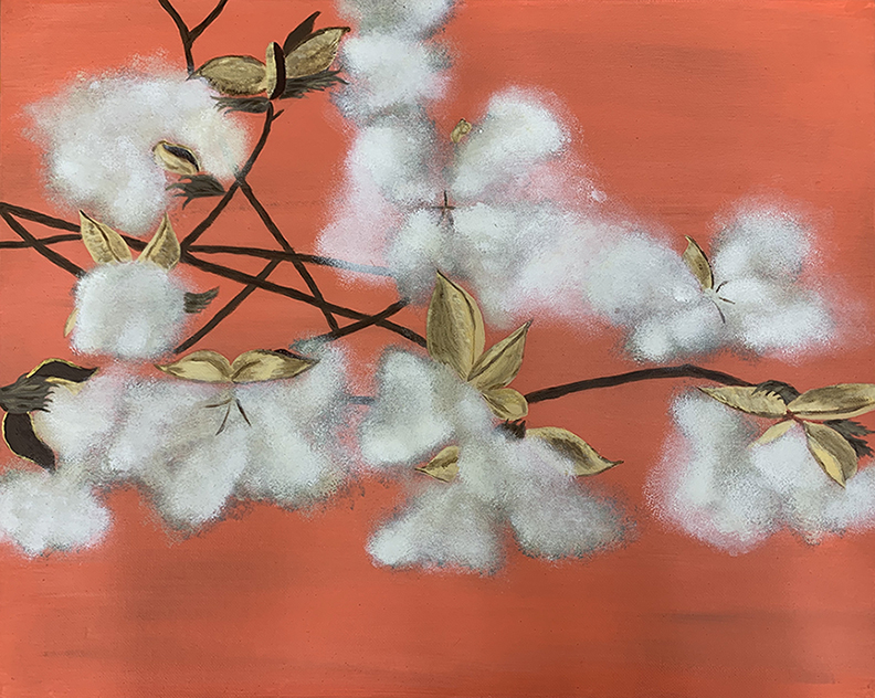 Image of cotton plant with white blooms in front of orange background.