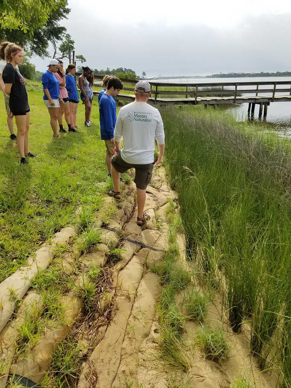 Interns learning about living shorelines as part of Student Master Naturalist Program. A group stands in the grass by a dock/ramp looking at the water/shorline